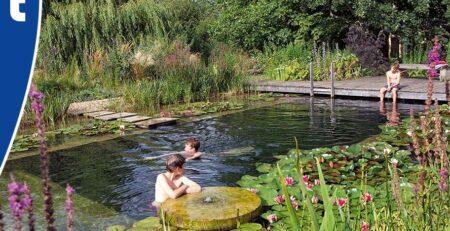 Van der Velde Waterplanten zwemvijver