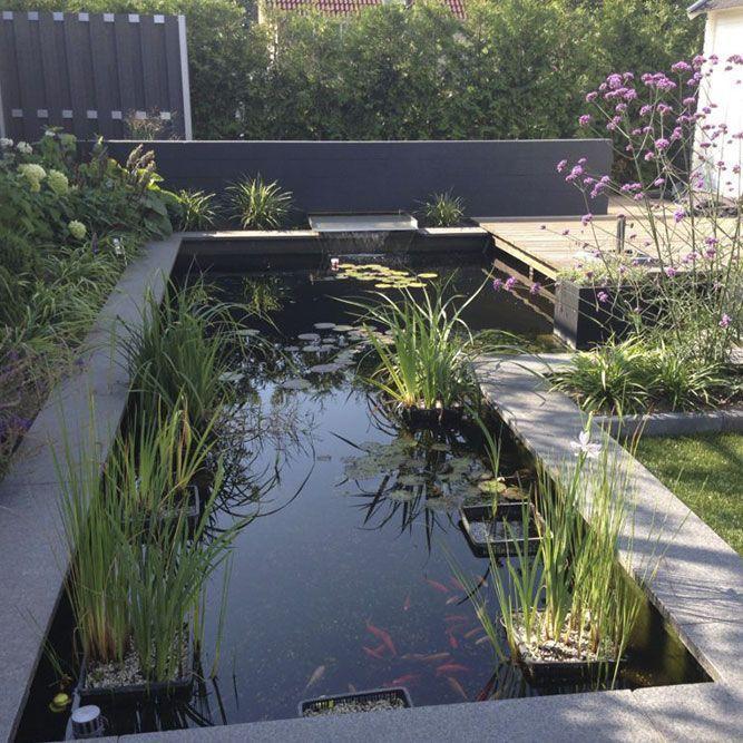 Vijvers Van der Velde Waterplanten