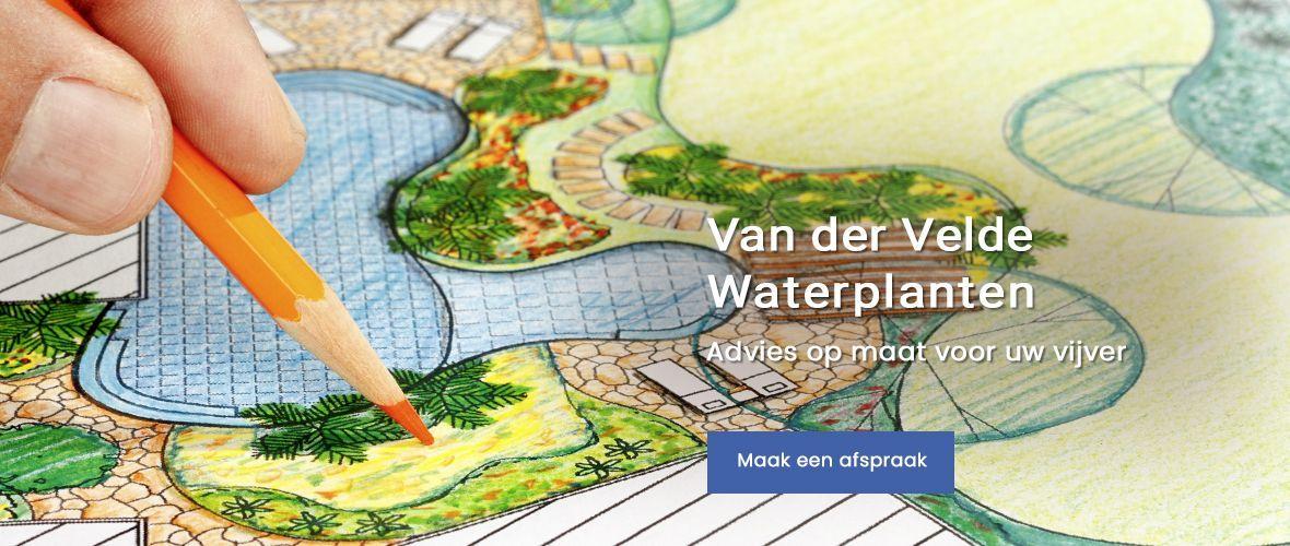 Simon van der Velde Advies op maat waterplanten vijvers