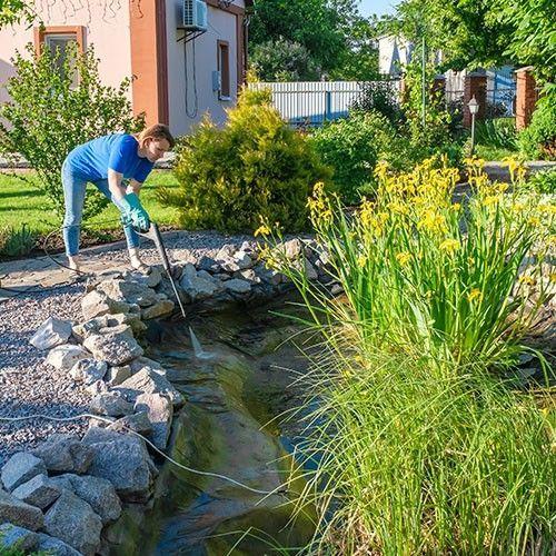 Van der Velde Waterplanten advies vijveronderhoud