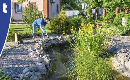 Vijveronderhoud Van der Velde Waterplanten