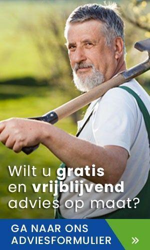 Simon van der Velde Advies vijverplanten