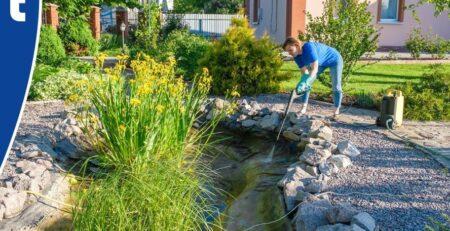 Vijveronderhoud voorjaar maart 2021 Van der Velde Waterplanten