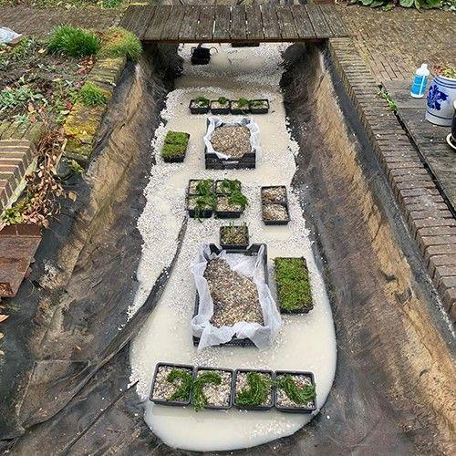 Van der Velde Waterplanten advies