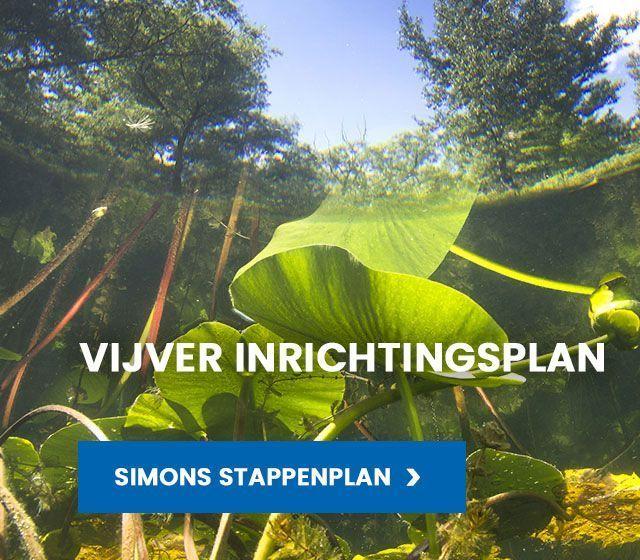 Van der Velde Waterplanten vijver inrichtingsplan