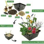 Mini-Vijver-Planten-Set-Multi-4
