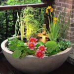 Mini-Vijver-Planten-Set-Roze-1