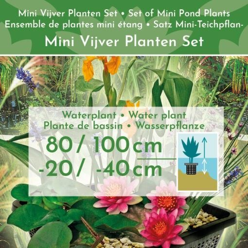 afdekgrind en waterplanten voeding