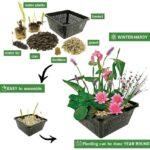 Mini-Vijver-Planten-Set-Roze-4