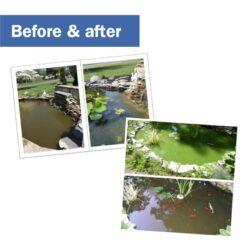 Gebruik 1 blok per 1 m³ water. Voor optimaal resultaat: combineer de Pond Block met Pond Clear-Zyme (vijverbacteriën).
