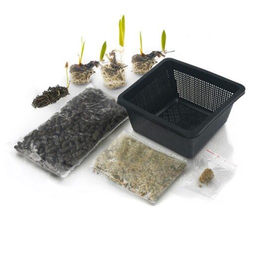 Dit waterplanten pakket bevat: 21 winterharde waterplanten